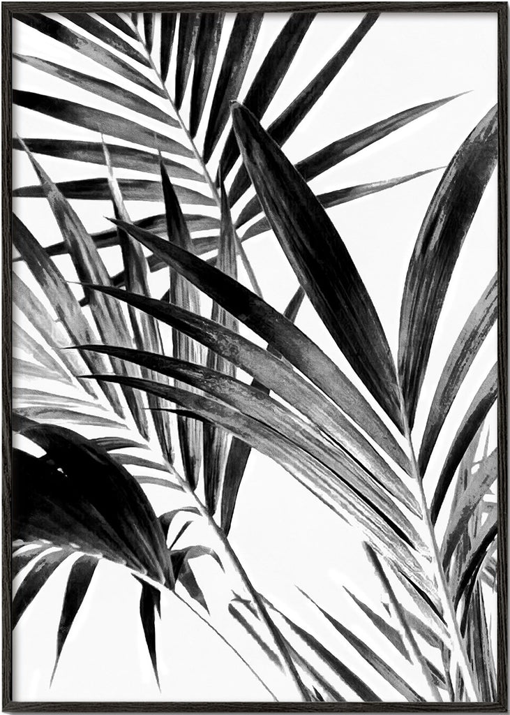 Palm Leaves Black and White 02