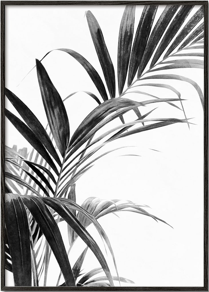 Palm Leaves Black and White 03