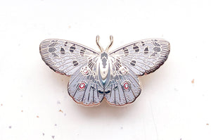Mountain Apollo Butterfly (Parnassius apollo) Enamel Pin