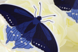 Pipevine Swallowtail Butterfly Vinyl Sticker