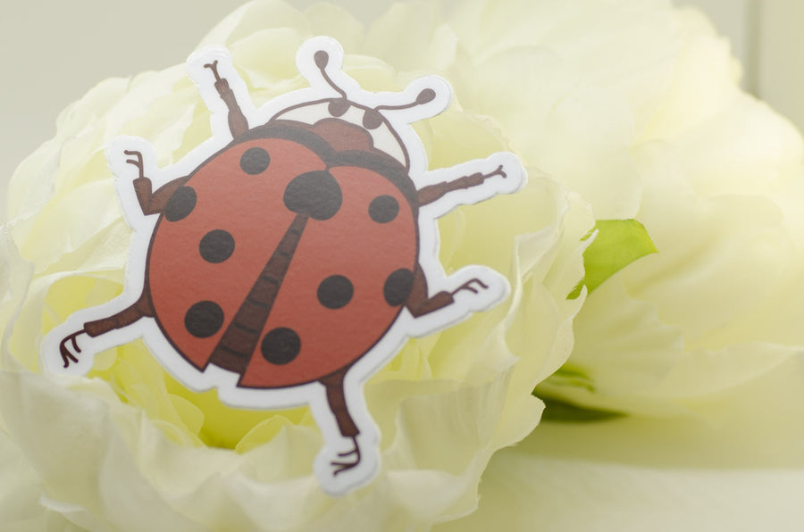 Nine Spotted Ladybug Vinyl Sticker