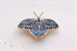Pipevine Swallowtail Butterfly (Battus philenor) Enamel Pin