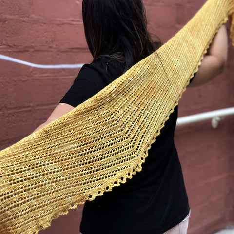 Pax Shawl Kit