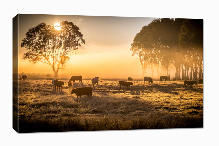 Custom photo canvas print inspiration and ideas