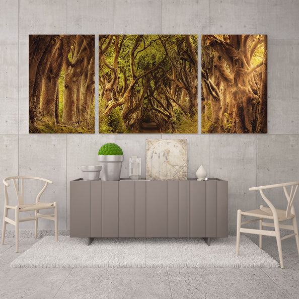 Split-image canvas prints are an amazing way to show off a single image | photoWOW Online