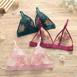 Romantic Sheer Floral Embroidery Bra & Panty Set