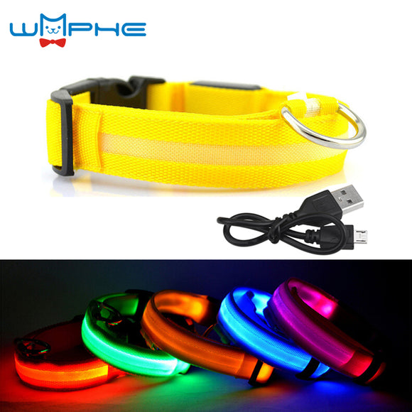 USB RECHARGEABLE LED DOG COLLAR NIGHT SAFETY LIGHT - 6 COLOURS - 5 SIZES - Hey Magento