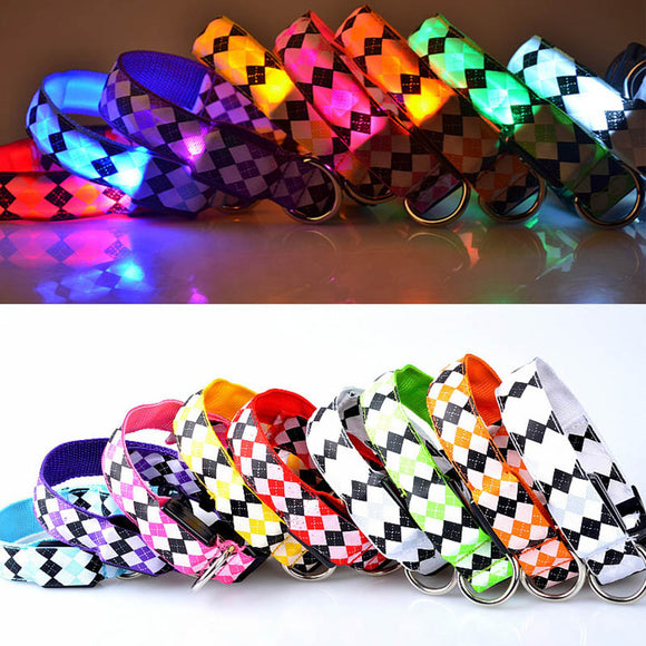 PET COLLAR LED LUMINOUS NIGHT SAFETY FLASHING GLOWING COLLAR - 4 SIZES 10 COLOUR CHOICE - Hey Magento