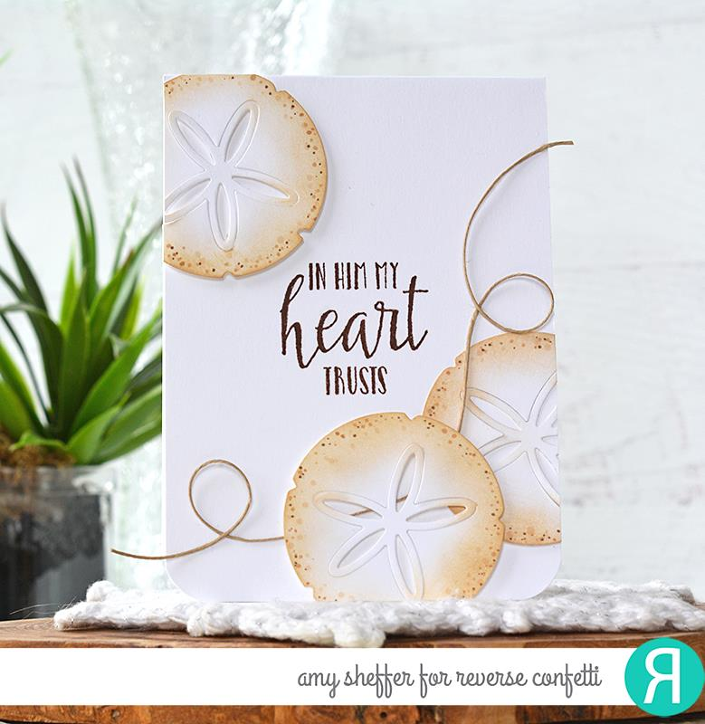 Sand Dollar Confetti Cuts