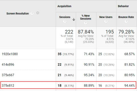 Google Analytics report - traffic by screen resolution