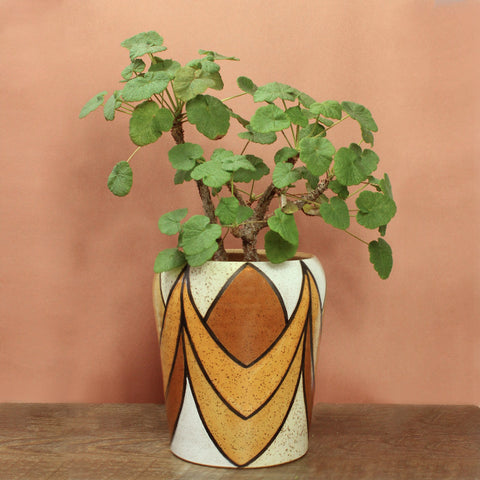 Glazed Stoneware Pot with Inverted Arch Pattern
