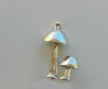 Mushrooms Charm