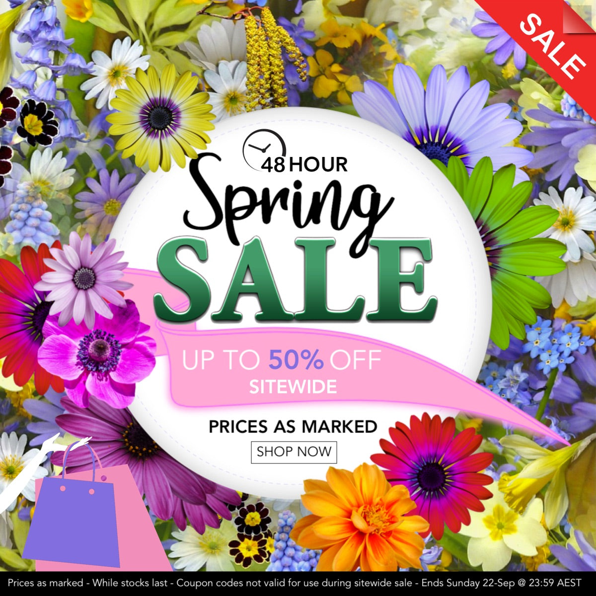 bella scoop sitewide sale
