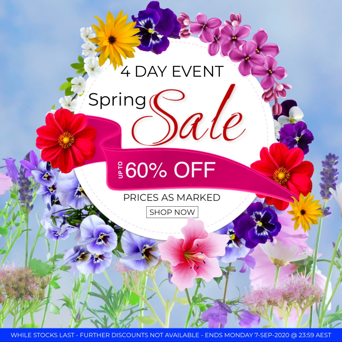Spring Sale bella scoop