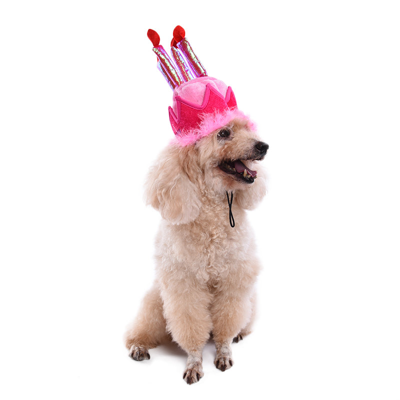 Pet Birthday Hat Dog Gifts Supplies For Puppy Animals
