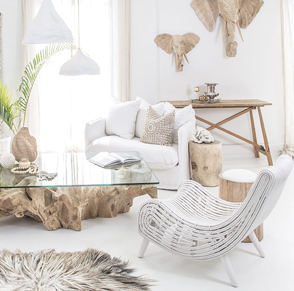 Teak Root Coffee Table Bleached Uniqwa Collections