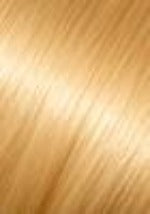 Light Gold Blonde #24 Seamless
