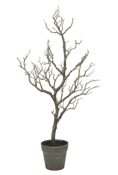 "Small 31"" Twig Tree in Black Pot"