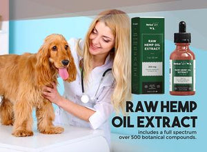 Have You Tried Hemp Oil Extract for Pets: Why does your pet need it?
