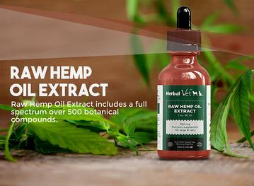 Buy the Best Hemp Oil extract for pets