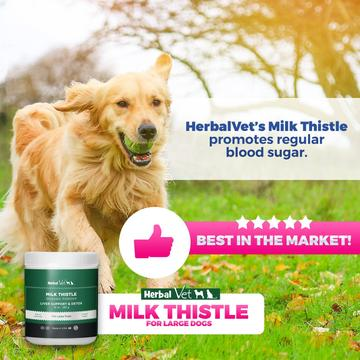 Buy Organic Milk Thistle Powder for Dogs from HerbalVetusa