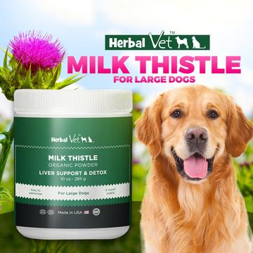 Get The Best Organic Milk Thistle Powder For Dogs At Herbal Vet