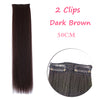 1 Clip in Long Straight Hair Extensions