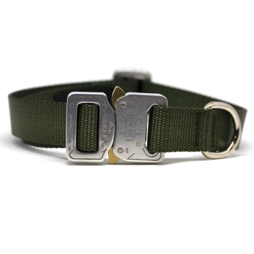 Cobra® Buckle Collars