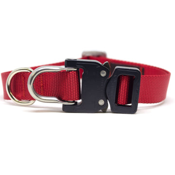 Cobra® D-Ring Collars