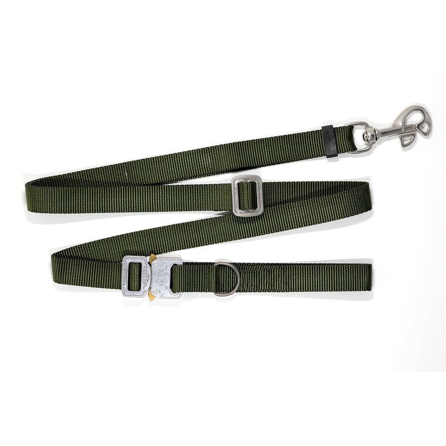 COBRA® Buckle Leash