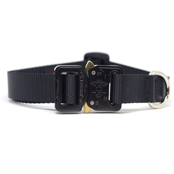 COBRA® Collar Black - Alpinhound Pet Co.