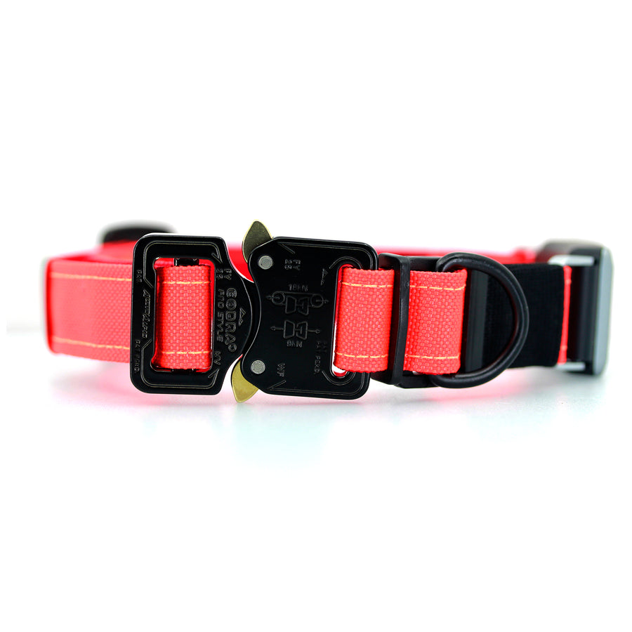 Fi Compatible COBRA® Pro Collar Blaze Orange
