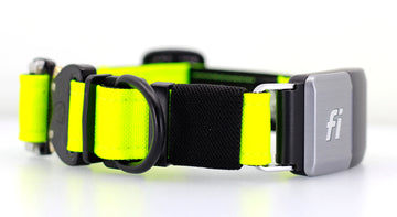 Fi Compatible Cobra FM Collar Hot Yellow
