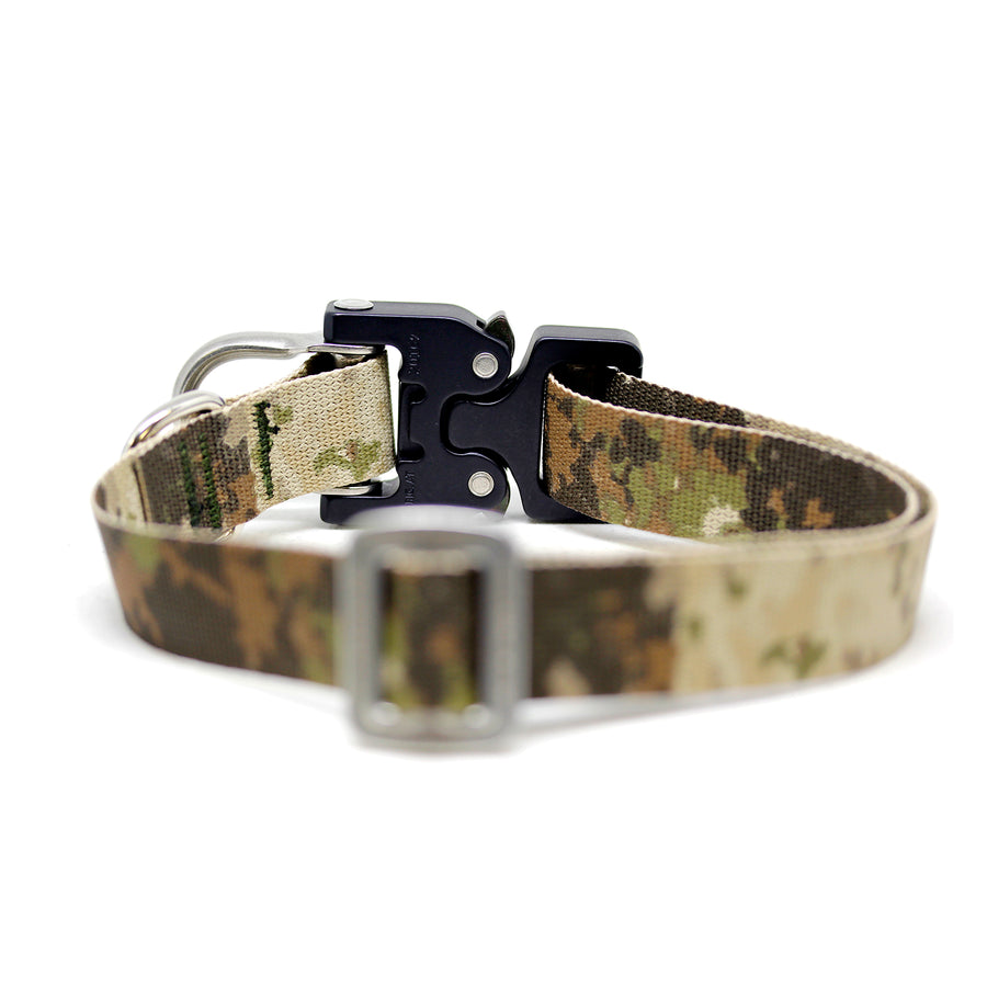 Cobra D-Ring Collar Camo - Alpinhound Pet Co.