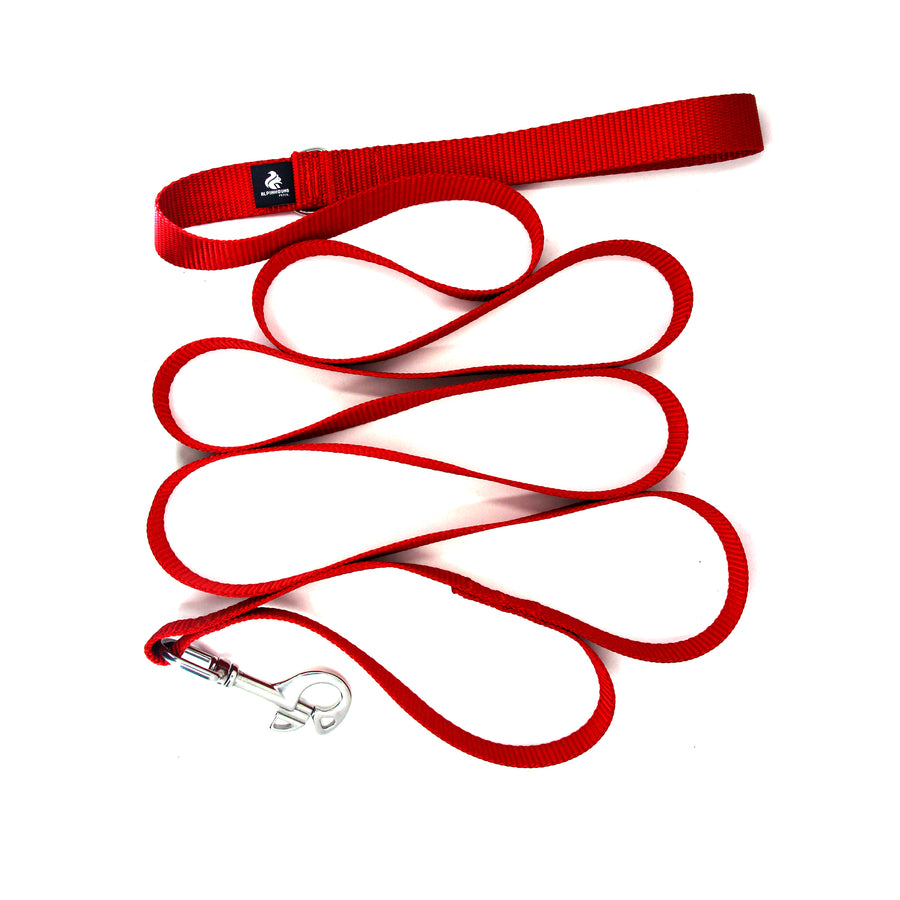 Leash with Stainless Steel Snaphook and D-Ring