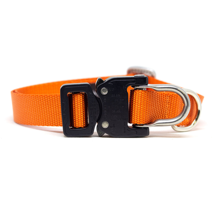 Cobra D-Ring Collar Fire - Alpinhound Pet Co.