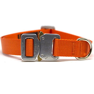 COBRA® Collar Fire - Alpinhound Pet Co.