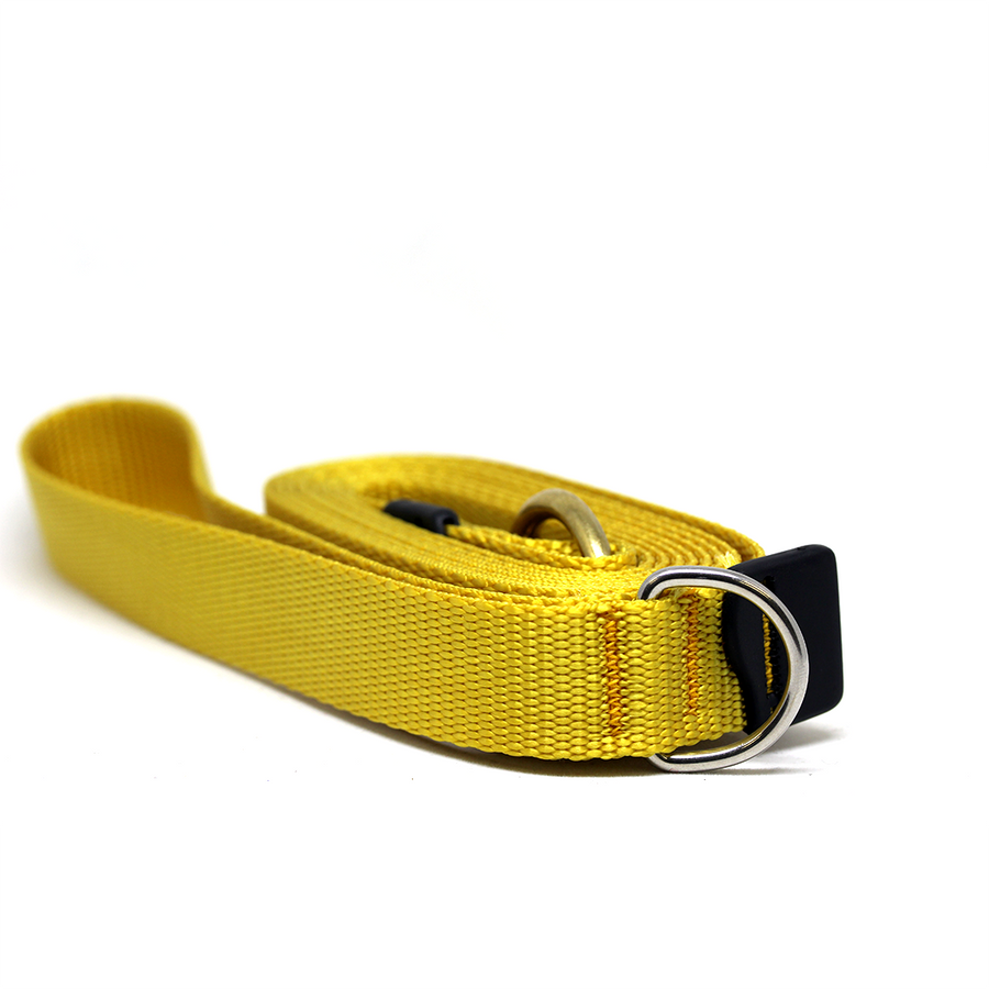 Gold Dog Leash with Solid Brass Snaphook and D-Ring - Alpinhound Pet Co.