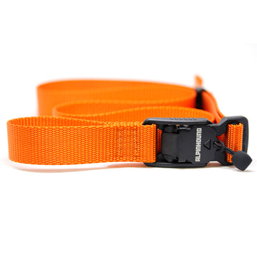OSFA Magnetic Field Belt - Fire - Alpinhound Pet Co.