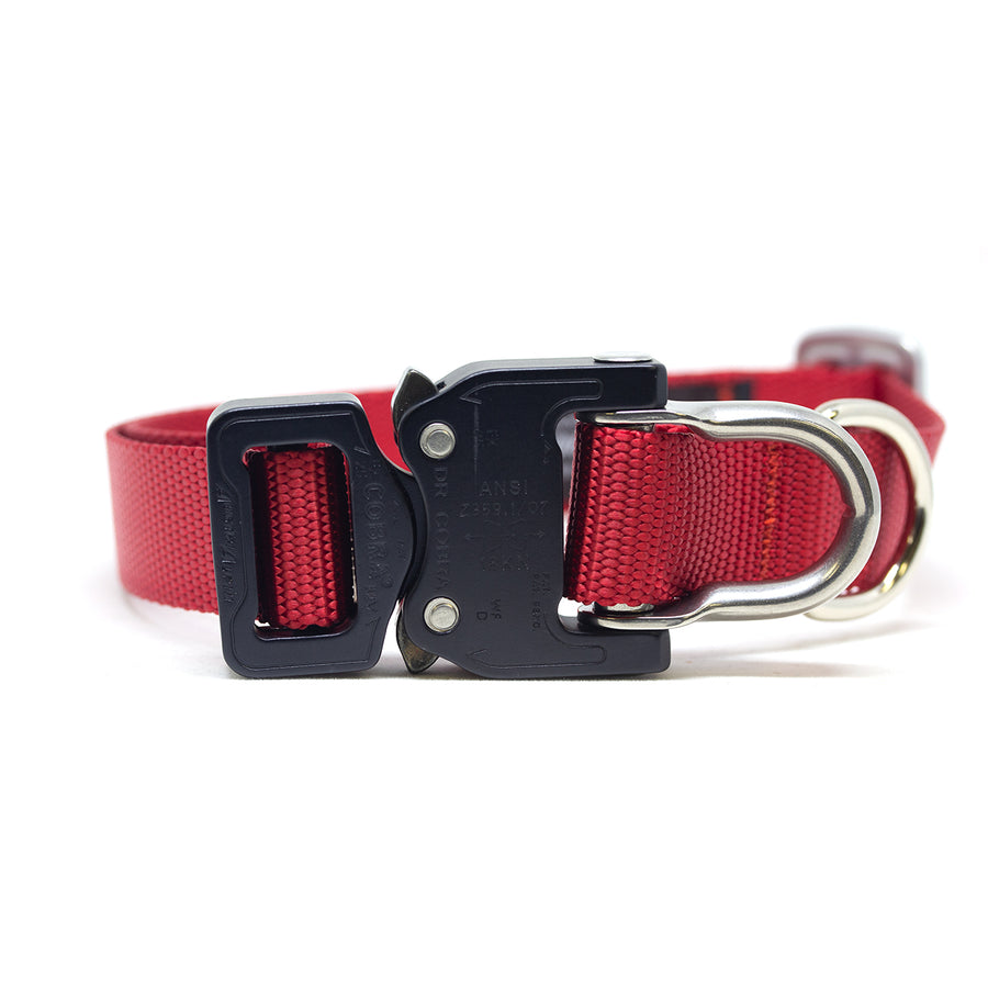 Cobra D-Ring Collar Cherry - Alpinhound Pet Co.