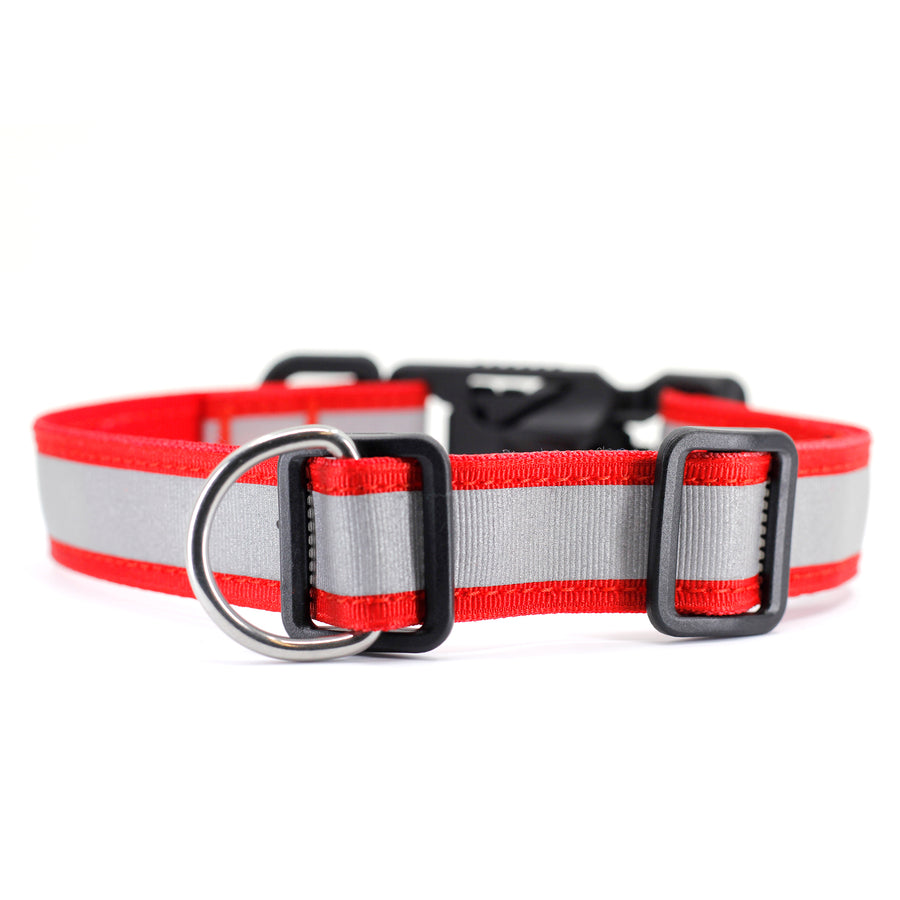 VBuckle Collar Cherry - Reflective - Alpinhound Pet Co.