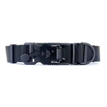 VBuckle Collar Black