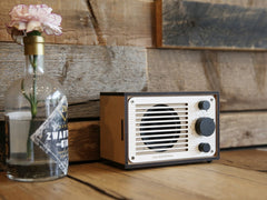 R1 & R2 Radio/Bluetooth Speaker