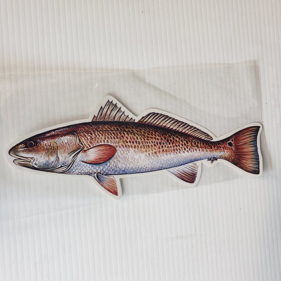 FishCals Decal Red Drum Decal 10 1/2