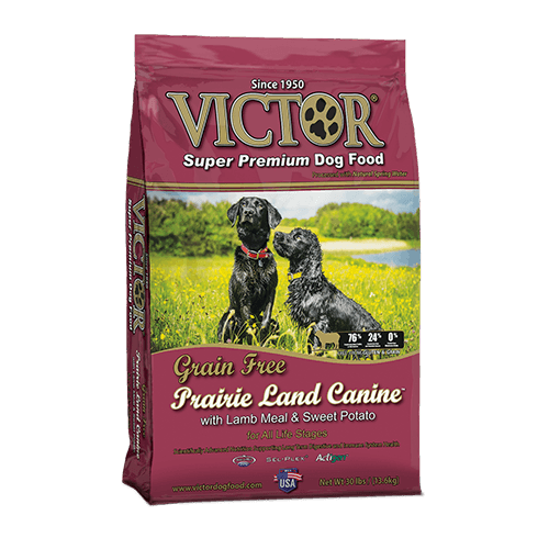 Prairie Land Canine Grain Free – with Lamb Meal and Sweet Potato - Dry Dog Food