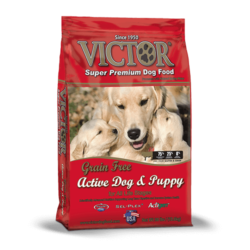 Active Dog & Puppy– Dry Dog Food
