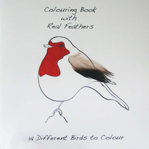 Robin cover colouring book with feathers