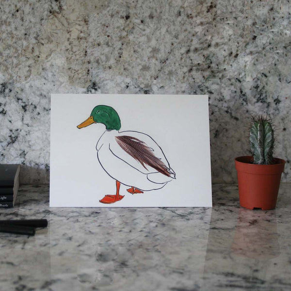 Duck cards in a tin