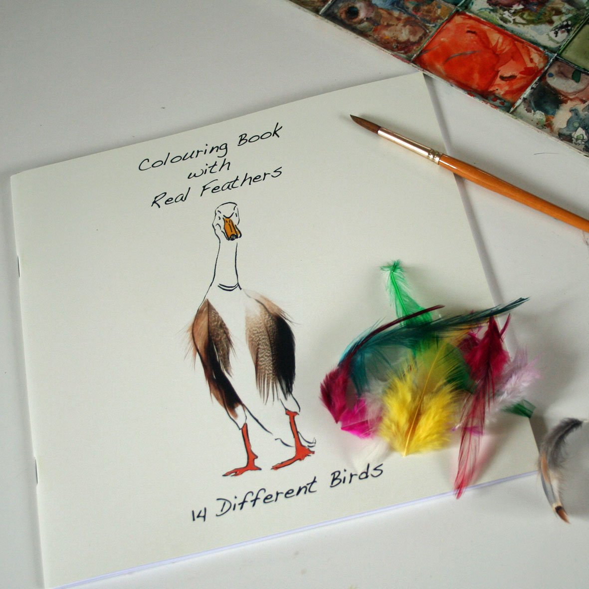 Colouring Book with Feathers