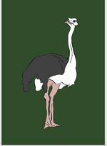 Load image into Gallery viewer, Ostrich Giclee Print